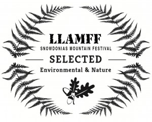 LLAMFF-Laurel