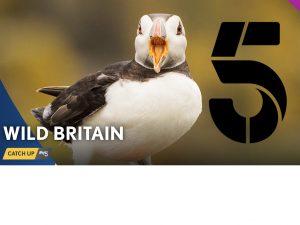 Wild-Britain