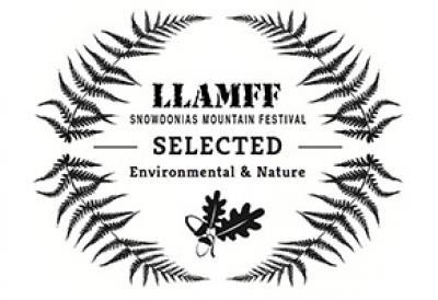 llamff-selected