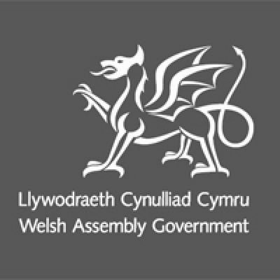 welsh assemby government large